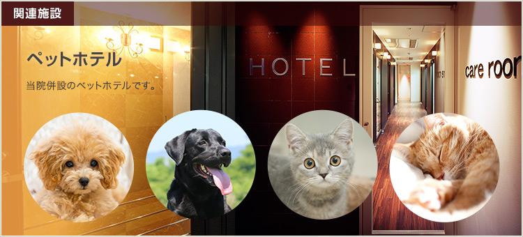 関連施設 ペットホテル