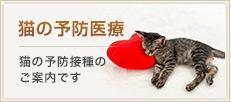 猫の予防医療