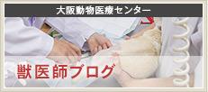 大阪動物医療センター 獣医師ブログ