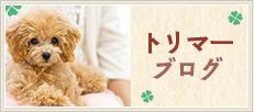 大阪動物医療センター トリマーブログ