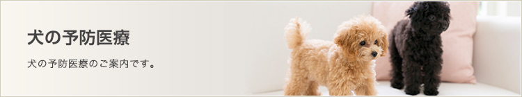 犬の予防医療